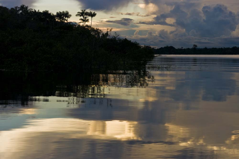 Cestovanie po Brazílii prales