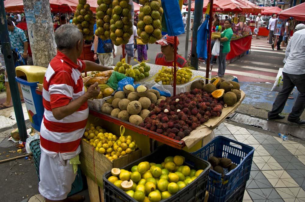 Cestovanie po Brazílii market