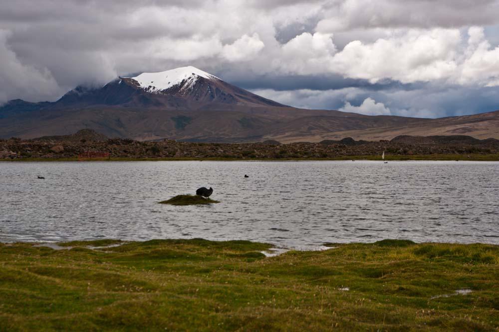 Cestovanie po Čile N.P.