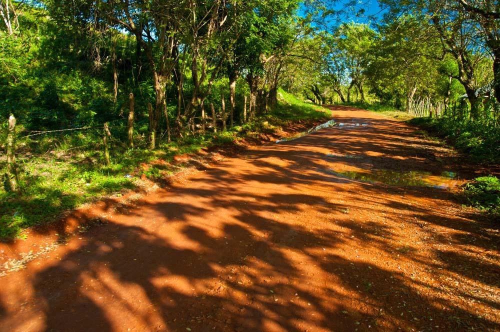 Cestovanie po Dominikánskej Republike monkey jungle road