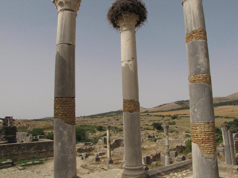 Cestovanie po Maroku Volubilis