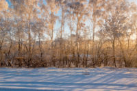 Transsibírska magistrála v zime východ slnka