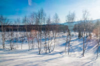 Transsibírska magistrála ruský vidiek