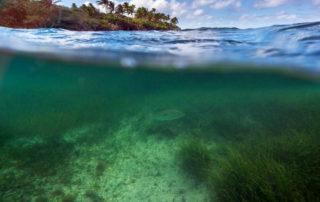 Okolie ostrova pod hladinou
